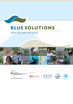 Blue-Solutions-from-Asia-and-the-Pacific-2014-Thumbnail