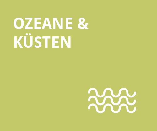 Stabile Ökosysteme - Ozeane und Kuesten