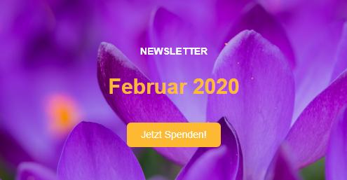 Kopfzeile des Newsletters vom Februar 2020 mit lila Blumen im Hintergrund und einem Spendenaufruf