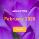 "header of the february 2020 newsletter, with purple flowers in the background and a ""donate"" call to ac"
