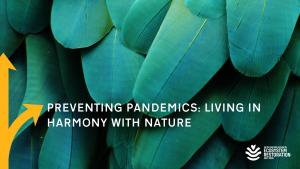 Webinarreihe Forward Thinkers Biodiversity