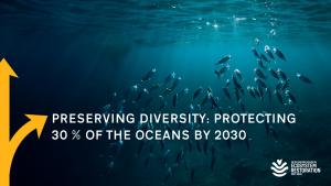 Webinarreihe Forward Thinkers Oceans